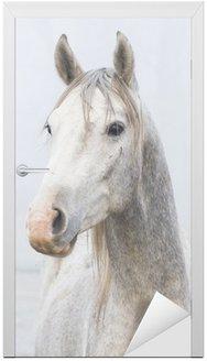 Naklejka na Drzwi Młody Stallion