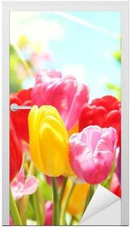 Naklejka na Drzwi Świeże tulipany w ciepłe światło słoneczne