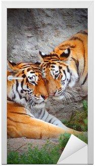 Naklejka na Drzwi Tygrysie para. Miłość w przyrodzie.