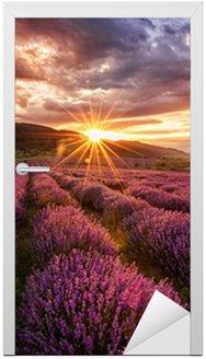 Naklejka na Drzwi Wspaniały krajobraz z lawendowego pola na wschód słońca