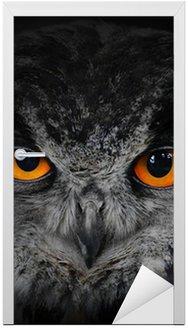 Naklejka na Drzwi Złe oczy. (Eagle Owl, Bubo bubo).