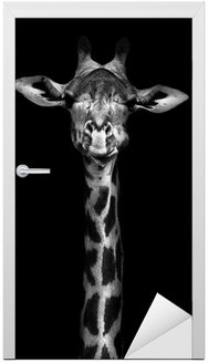 Naklejka na Drzwi Żyrafa w czerni i bieli
