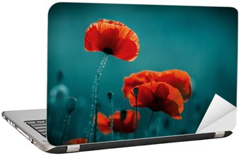 Naklejka na Laptopa Niesamowite pole maku. Letnie kwiaty.