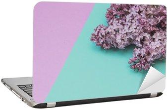 Płaski lay stylowy zestaw: Lilac kwiaty na pastelowym tle. Widok z góry.