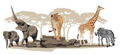 Naklejka na Ścianę Afrykańskie zwierzęta