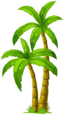 Naklejka na Ścianę Dwie palmy