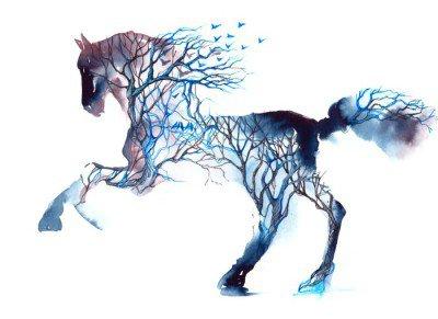 Naklejka na Ścianę Koń