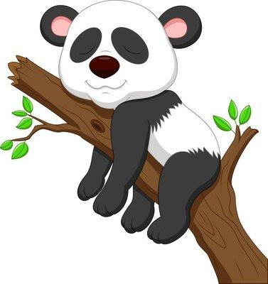 Naklejka na Ścianę Spanie Panda