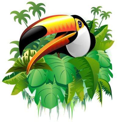 Naklejka na Ścianę TUCANO vegetazione tropicaletropische-tukan na tropikalnych roślin wektor-
