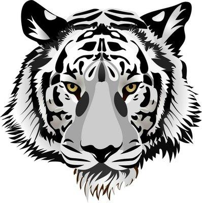 Naklejka na Ścianę Tygrys head.vector