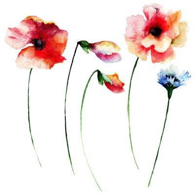 Naklejka na Ścianę Zestaw akwareli letnich kwiatów