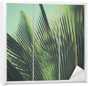 Naklejka na Szafę Abstrakcyjna tropikalnych tła archiwalne. Liści palmowych w słońcu.