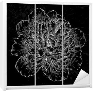 Naklejka na Szafę Piękne czarno-białe piwonia kwiat samodzielnie na tle. Ręcznie rysowane linie konturowe i udarów.
