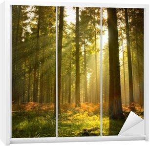 Naklejka na Szafę Piękny las