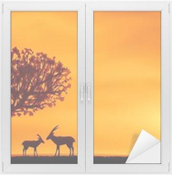 Naklejka na Szybę i Okno Afrykańska sawanna dekoracje wieczór z dwoma antylop