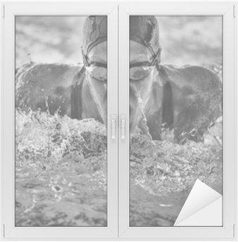Naklejka na Szybę i Okno Motylkowy pływanie mistrz