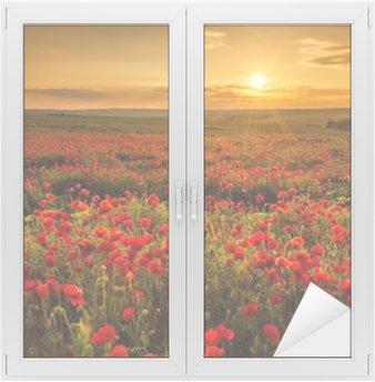 Naklejka na Szybę i Okno Pole makowe o zachodzie słońca
