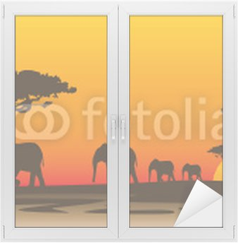 Naklejka na Szybę i Okno Wieczór Afryka