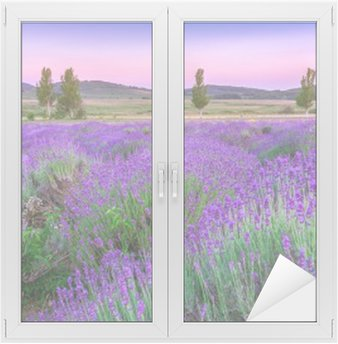Naklejka na Szybę i Okno Zachód słońca nad polem letnich lavender w Tihany, Węgry