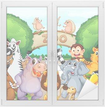 Naklejka na Szybę i Okno Zoo i zwierząt