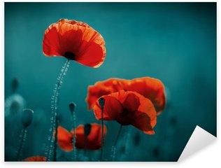 Naklejka Pixerstick Niesamowite pole maku. Letnie kwiaty.