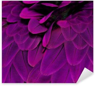 Naklejka Pióra; fioletowy