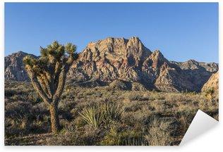 Naklejka Red Rock Nevada Joshua Tree