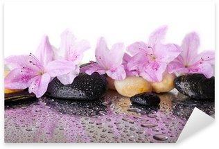 Naklejka Różowe kwiaty i czarne kamienie
