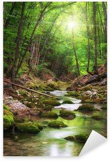 Naklejka Pixerstick Rzeka głęboko w lasów górskich