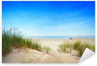 Naklejka Spokojna plaża z wydmami i trawa zielona. spokojny ocean