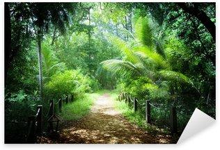 Naklejka Pixerstick Sposób, w dżungli Seszelach wysp