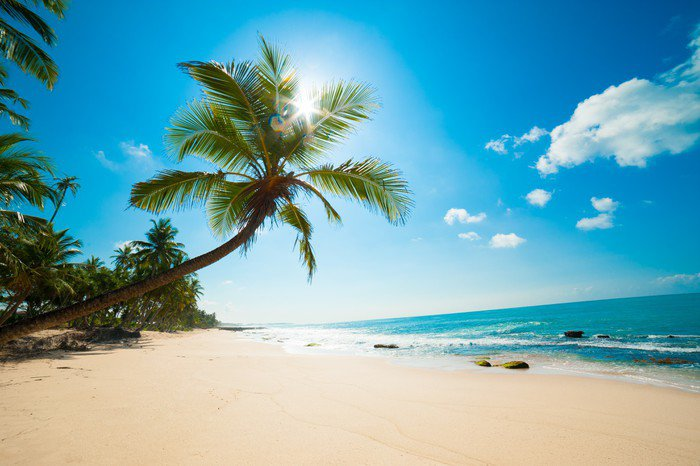Naklejka Pixerstick Tropikalna plaża - Malediwy