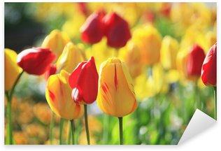 Naklejka Pixerstick Tulip