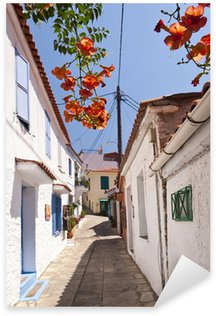 Naklejka Ulica sceny w Manolates na Samos