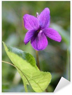 Naklejka Pixerstick Violetta