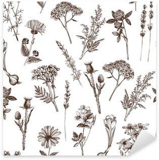Naklejka Wektor szwu z ręcznie rysowane tuszem szkic zioła lecznicze