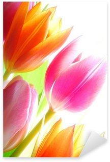 Naklejka Pixerstick Wiosenne tulipany