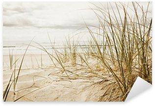 Naklejka Zamknąć z wysokiej trawy na plaży podczas pochmurnego sezonie