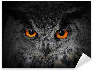 Naklejka Pixerstick Złe oczy. (Eagle Owl, Bubo bubo).