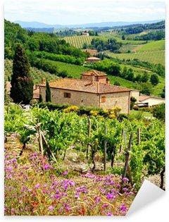 Naklejka Pixerstick Zobacz przez winnice z domu z kamienia, Toskania, Włochy