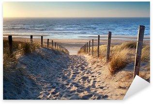 Nálepka Cesta na severní pláži u moře ve zlatě slunci