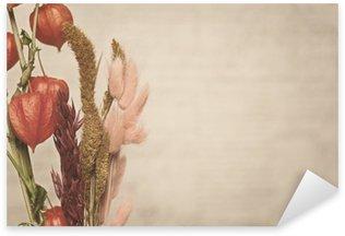 Nálepka Pixerstick Detailní pohled na rostlinu Physalis. Vintage styl