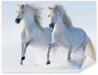 Nálepka Pixerstick Dva cválá snow-bílí koně