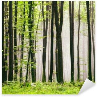Nálepka Pixerstick Jarní les