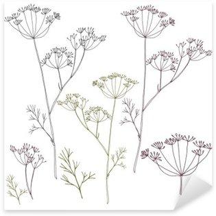 Nálepka Kopru nebo fenyklu květy a listy.