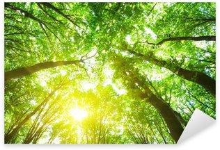 Nálepka Pixerstick Lesní stromy