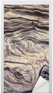 Nálepka na Dveře Kůra stromu textura dřevo