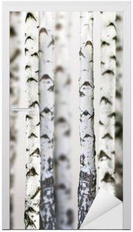 Nálepka na Dveře Přírodního pozadí - bříza - tapety na plochu