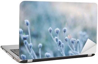 Nálepka na Notebook Abstraktní přirozeného pozadí ze zmrazeného rostliny pokryta námraza nebo jinovatka
