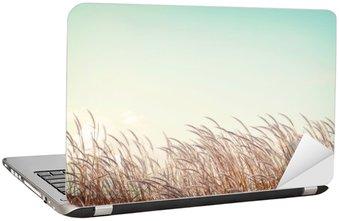 Nálepka na Notebook Abstraktní vintage pozadí přírody - měkkost bílé pírko trávy s retro modrou oblohou prostor